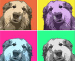 Convert Your Photo to Pop Art